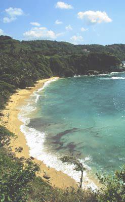 playa bretón