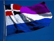 Bandera del poder judicial